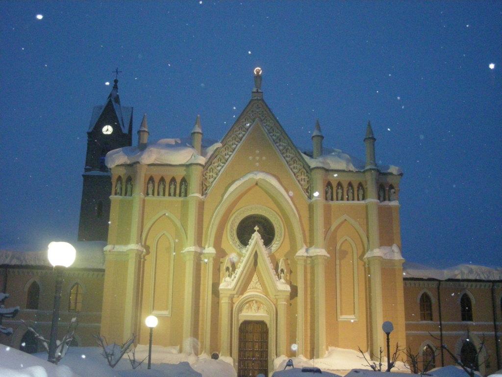 2012 Calamità neve Cesena